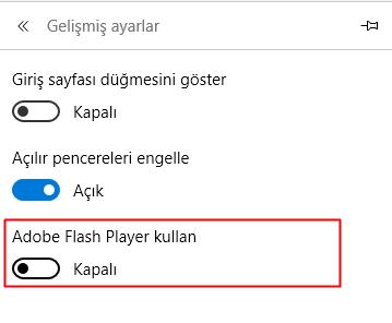 edge flash player