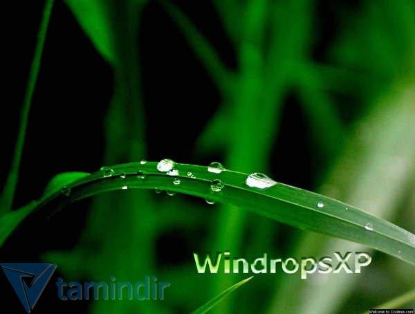 60 Adet Windows Xp Arka Plan Indir Duvar Kağıdı Koleksiyonu Tamindir