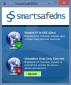 SmartSafeDNS 2