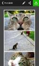 Photo Grid - Collage Maker Birden Fazla Fotoğraf ile Kolaj