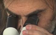 Mikro Heykeller Yapan Türk Sanatçı Saç Teline Besmele Yazdı