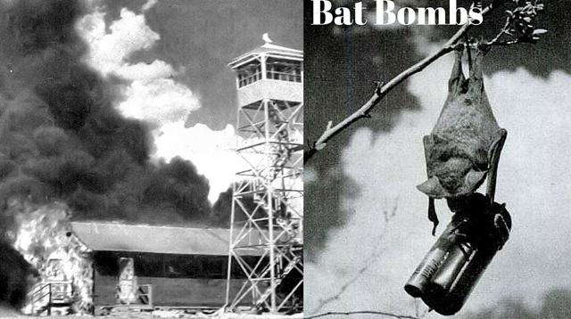 Yarasa bombalar