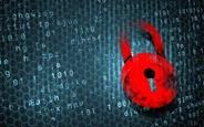 Siber Güvenlik Yarışında Bayrağı Saltbae Yakaladı