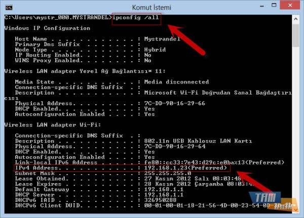 how to find ip of my teamspeak server