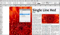 Adobe InDesign CS6
