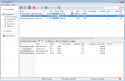 BitTorrent Eşler 3