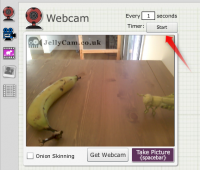 JellyCam Webcam
