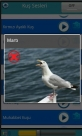 Kuş resmi